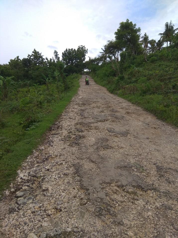 Cesta směrem k Angell´s Billabong