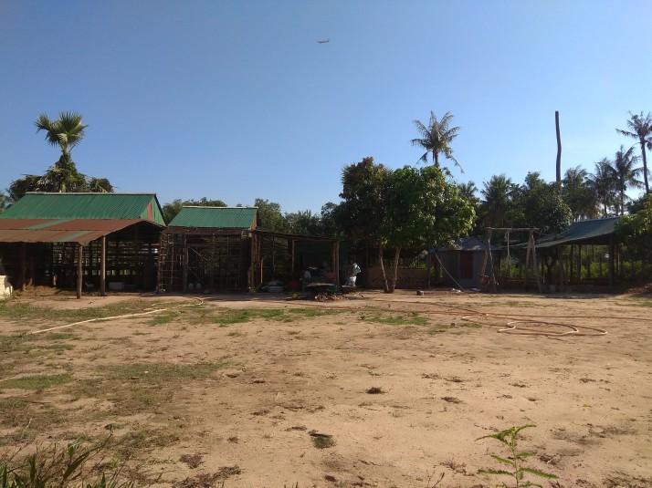 Pohled z dobrovolnické terasy, naproti nám jsou schovány kozy, slepice, prasata a krávy.